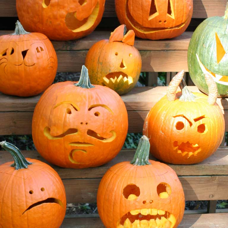 Collection of jack-o'-lanterns.